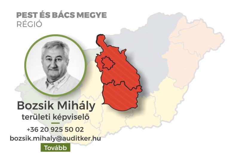 Pest és Bács megye - Bozsik mihály
