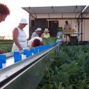 BEETS SP Zöldségtermesztés gépei